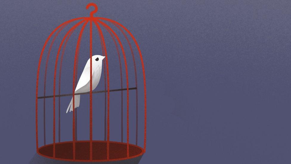 Ilustración de un pájaro en una jaula.
