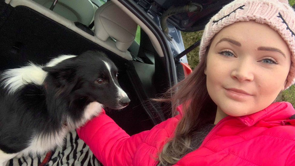 Border collie rescued after Llanelli drone search