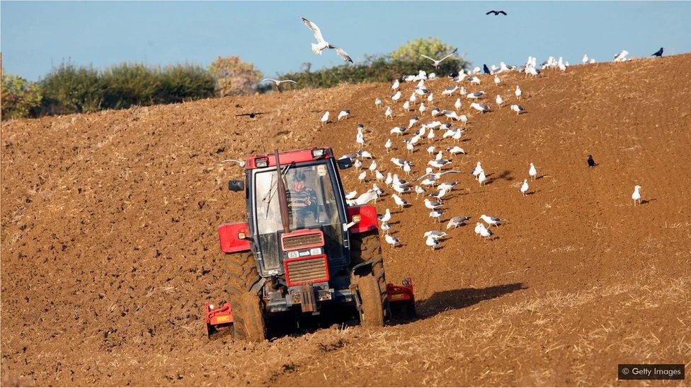宇航員·哈德菲爾德(Chris Hadfield)曾在他父母農場的單調工作中挑戰憋氣。(Credit: Getty Images)