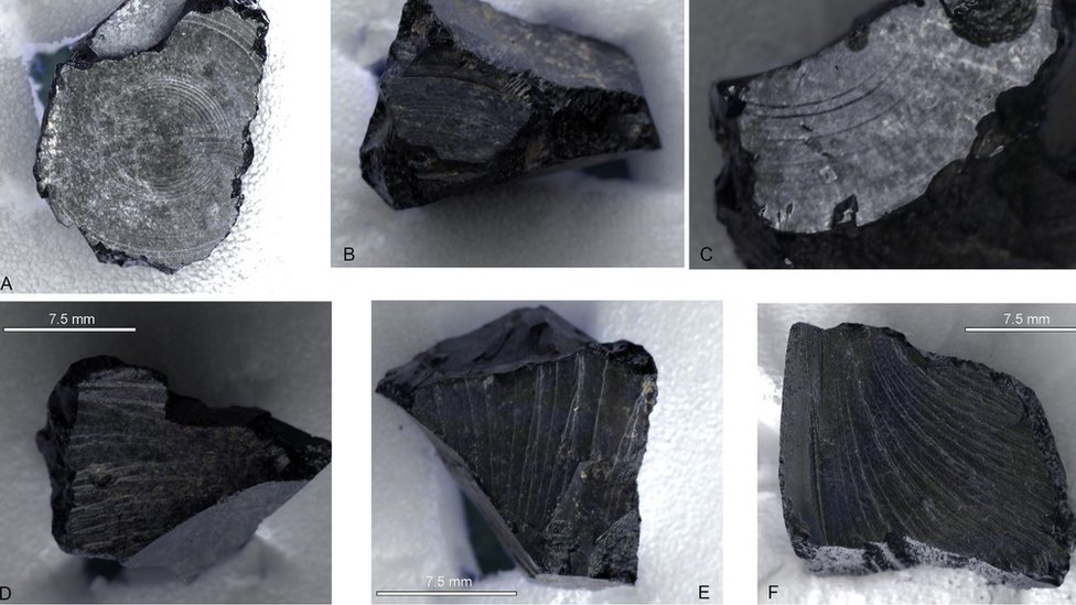 Fragments of bitumen from Sutton Hoo