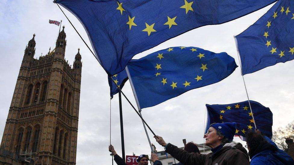 Opositores al Brexit manifestándose frente al parlamento
