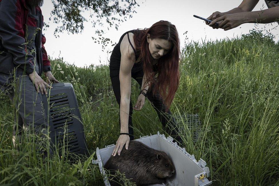 Jaroslav with a beaver