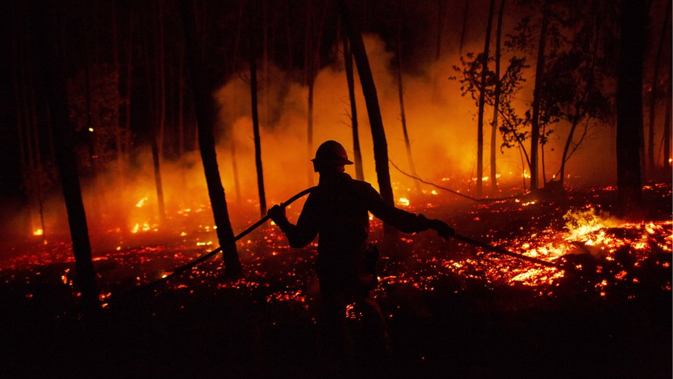 A firefighter from the National Republican Guard GIPS works on a fire in a forest after a wildfire took dozens of lives on 19 June 2017 near Pedrógão Grande, in Leiria district, Portugal