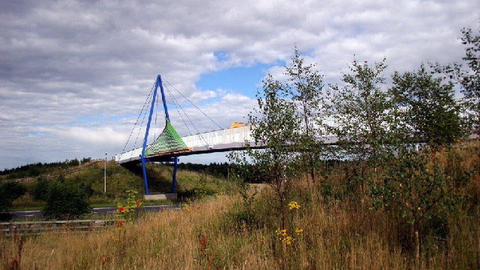Wynyard 'white elephant' bridge plan 'a waste of money'