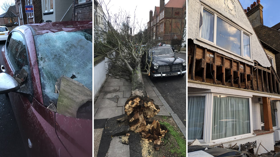 Images showing a smashed car, uprooted tree and damaged house