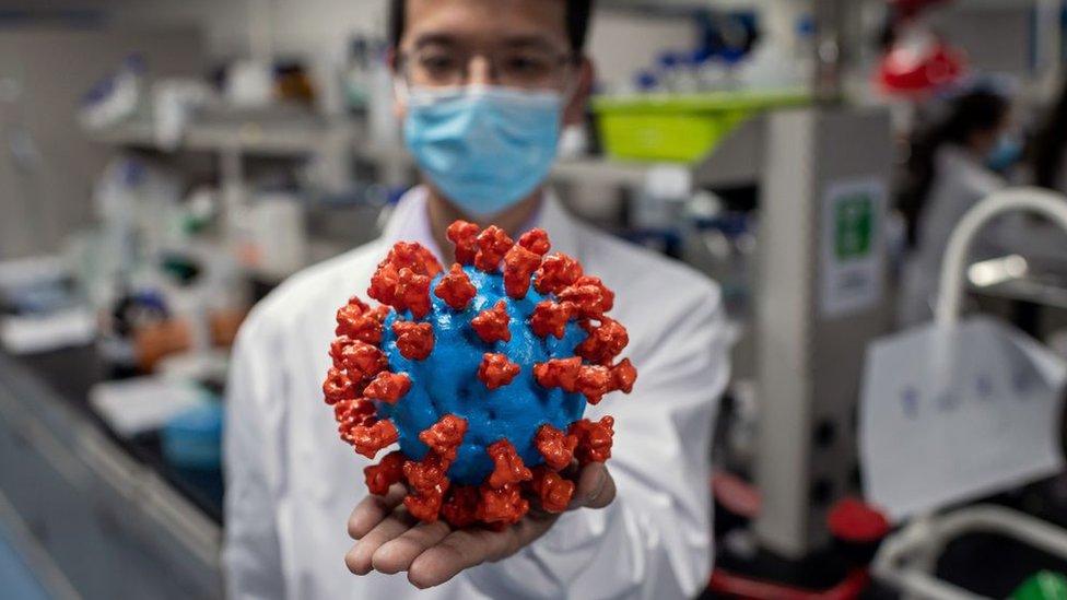 Investigador sostiene un modelo del virus.