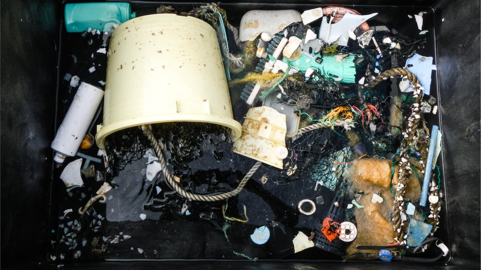 Some of the plastic collected