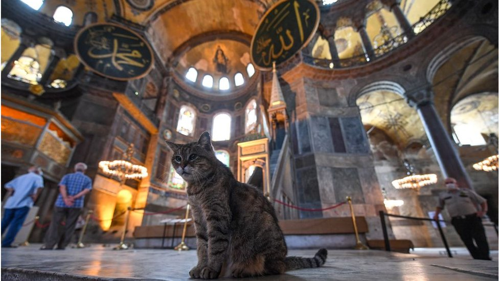 Айя-София: Турция и ЮНЕСКО обменялись жесткими заявлениями в годовщину превращения всемирно известного музея в мечеть