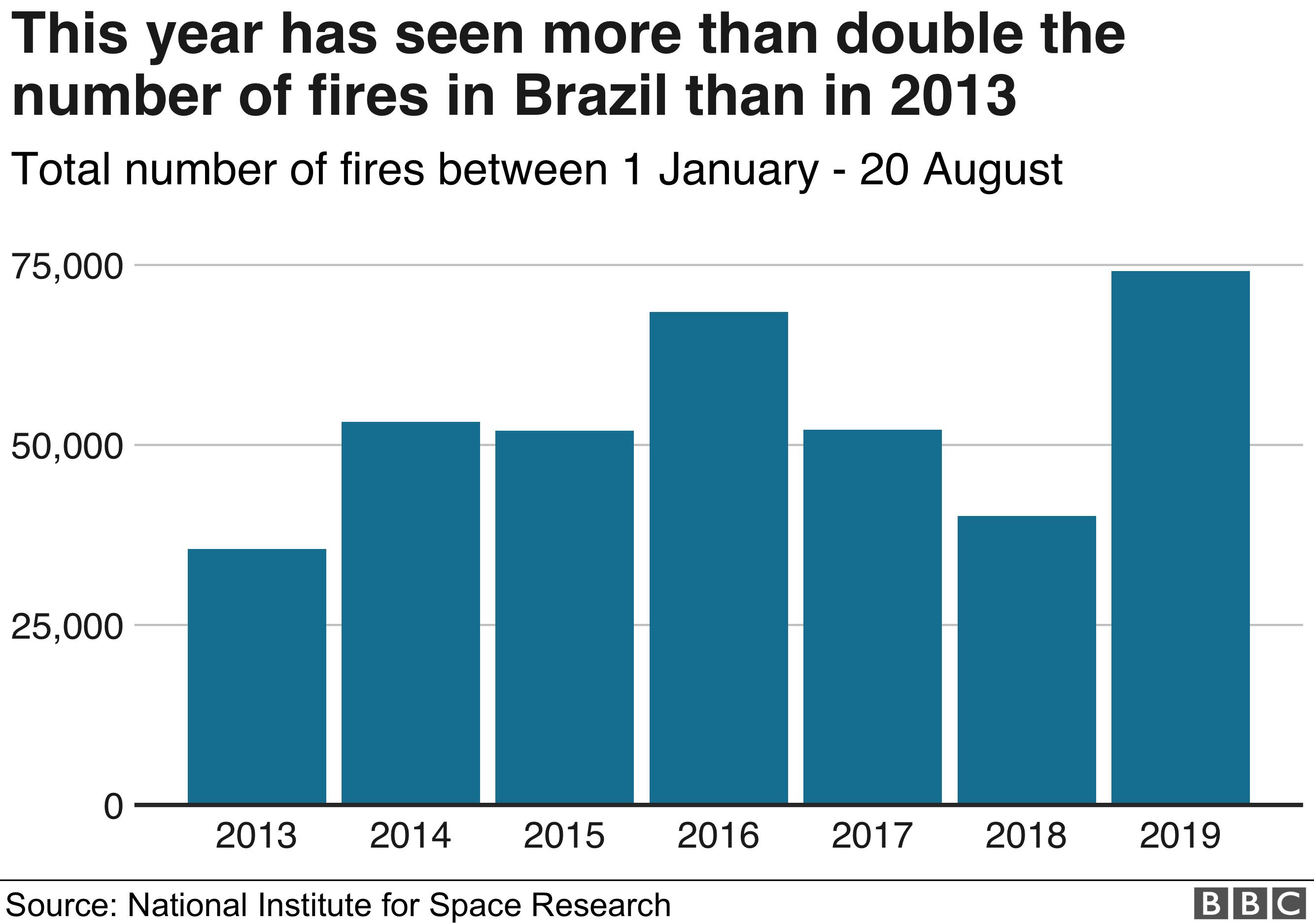 Brazil Amazon fires graph