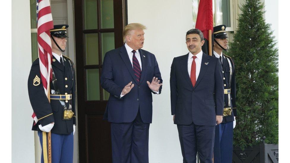 ترامب ووزير خارجية الإمارات