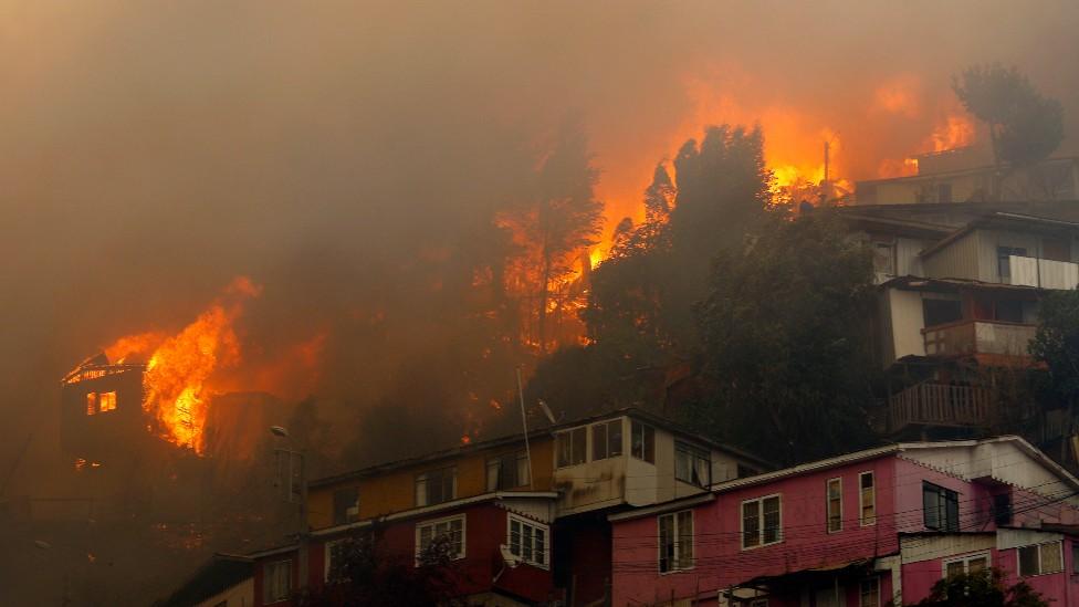 Incendio forestal Rocuant, Valparaíso, en Chile