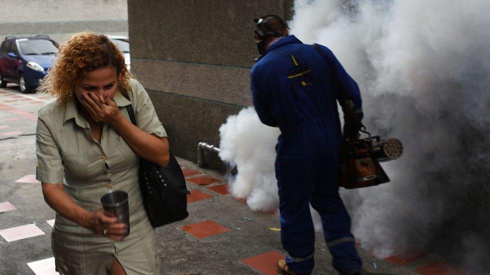 Fumigaciones en Caracas
