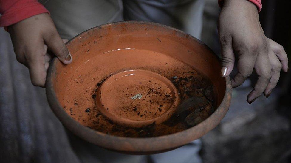 Un recipiente de barro con agua estancada es uno lugar ideal para la incubación de las larvas