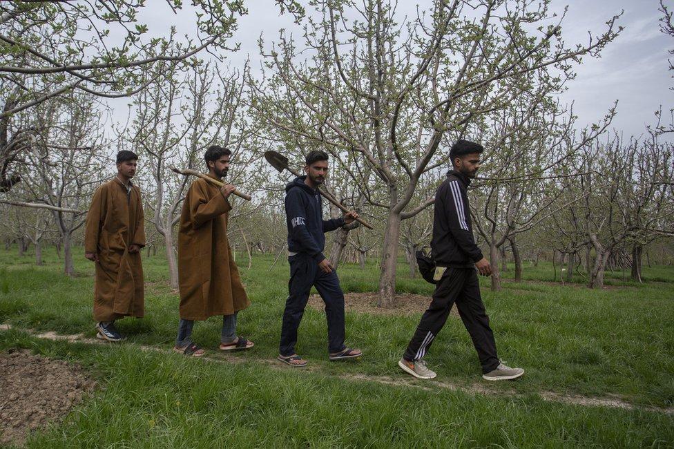 Kashmir search