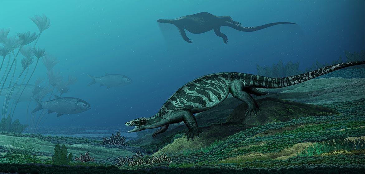 Ilustración de cómo se habría visto Eorhynchochelys sinensis