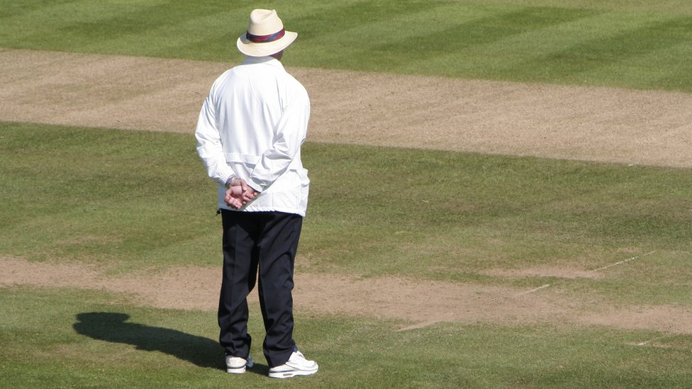 Cricket umpire