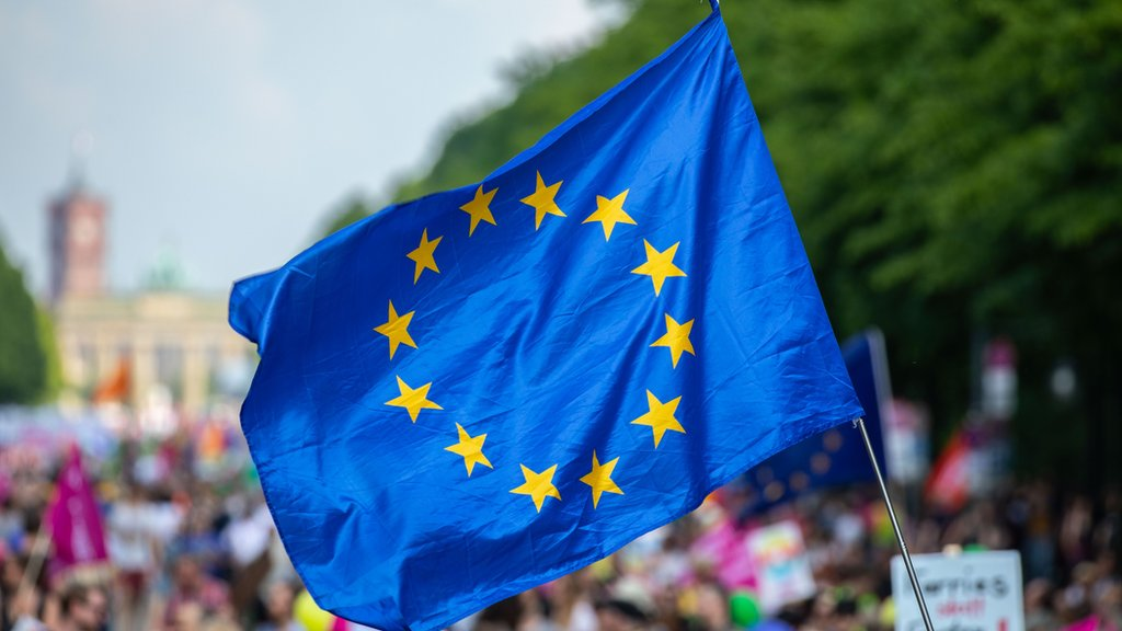 What's at stake in the EU elections