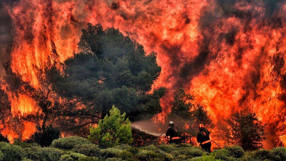 83 людини загинуло: хто винен в такій кількості жертв пожежі в Греції?