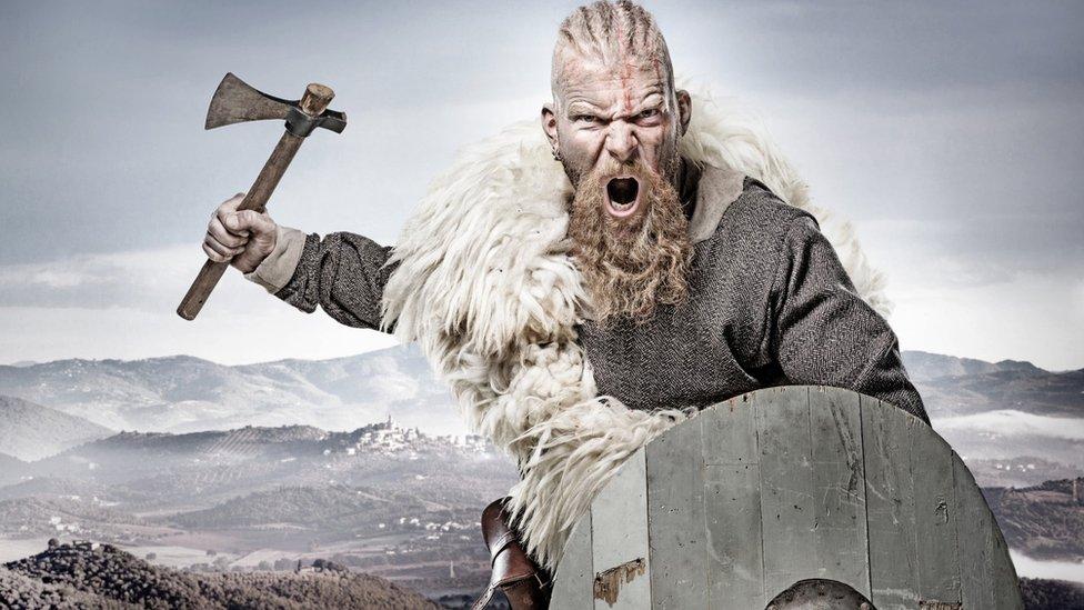 actor Viking