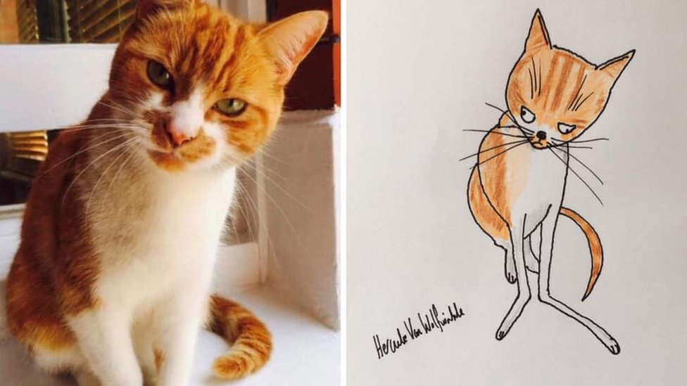 Cartoon of cat