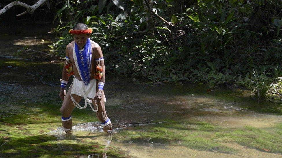 Rahueniča, šaman plemena Samaria iz Veneceluanske Piaroe, prelazi preko reke