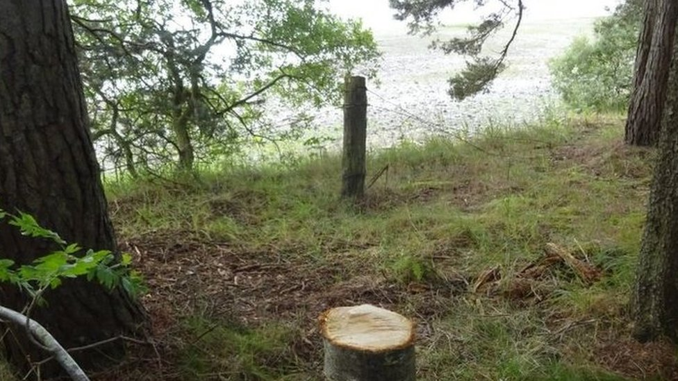 Gladhouse Reservoir, near Penicuik, Midlothian