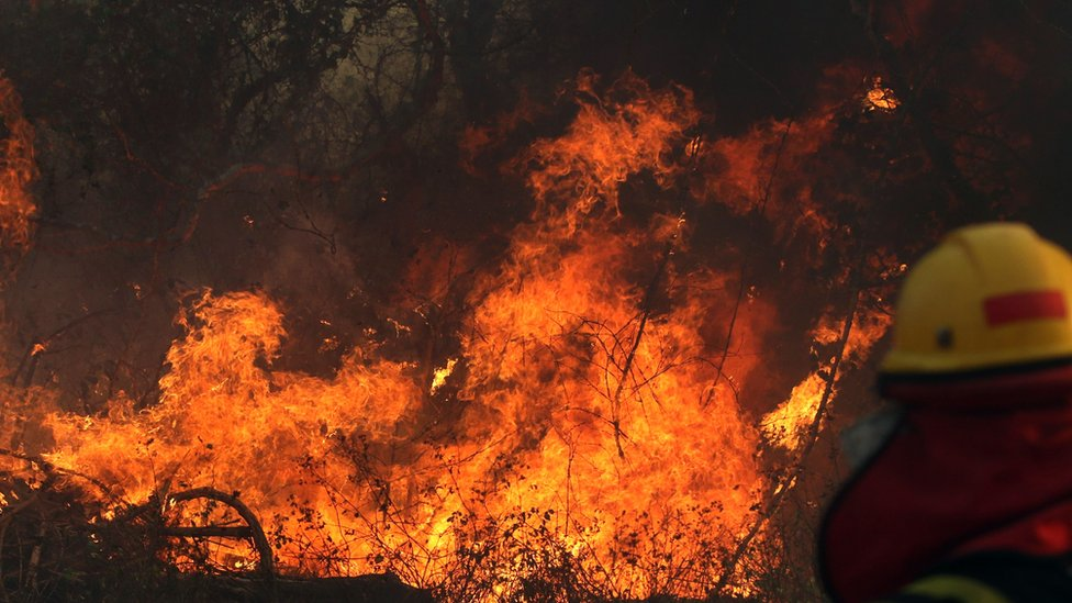 A firefighter works during a forest wildfire near Robore, Santa Cruz region, eastern Bolivia on August 22, 2019.