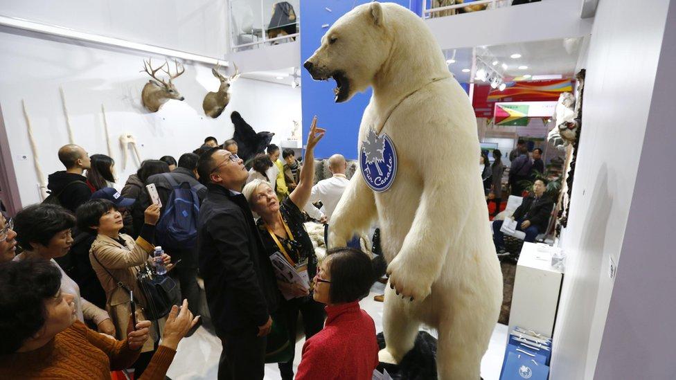中國在2018年舉辦了首屆進口展,以提振外貿。