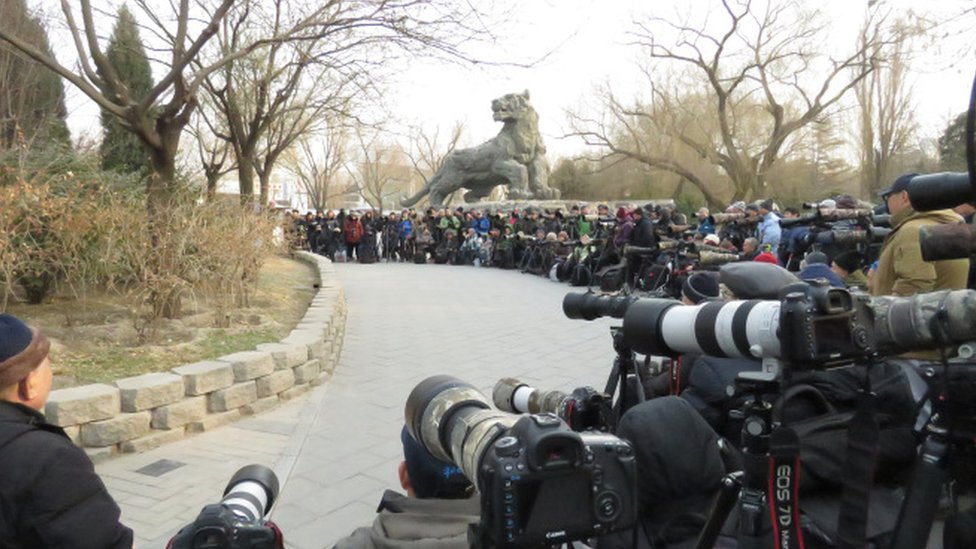 200 photographers camped out