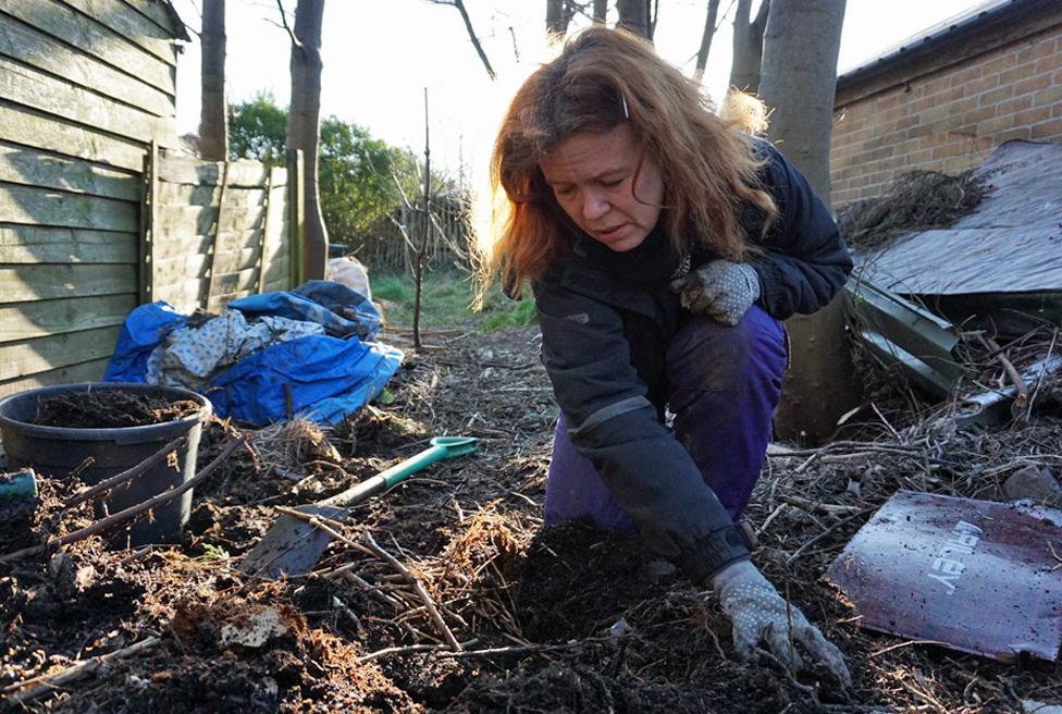 Rachel Ingrams gardening