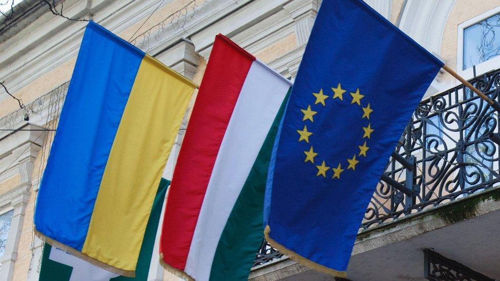 Скандал з угорськими паспортами на Закарпатті: реакція Києва та Будапешта