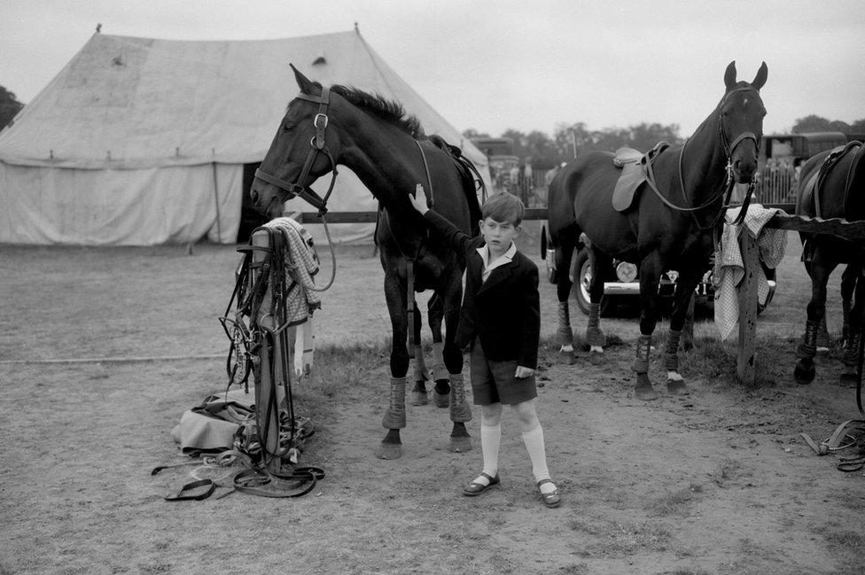 Princ Čarls mazi konja
