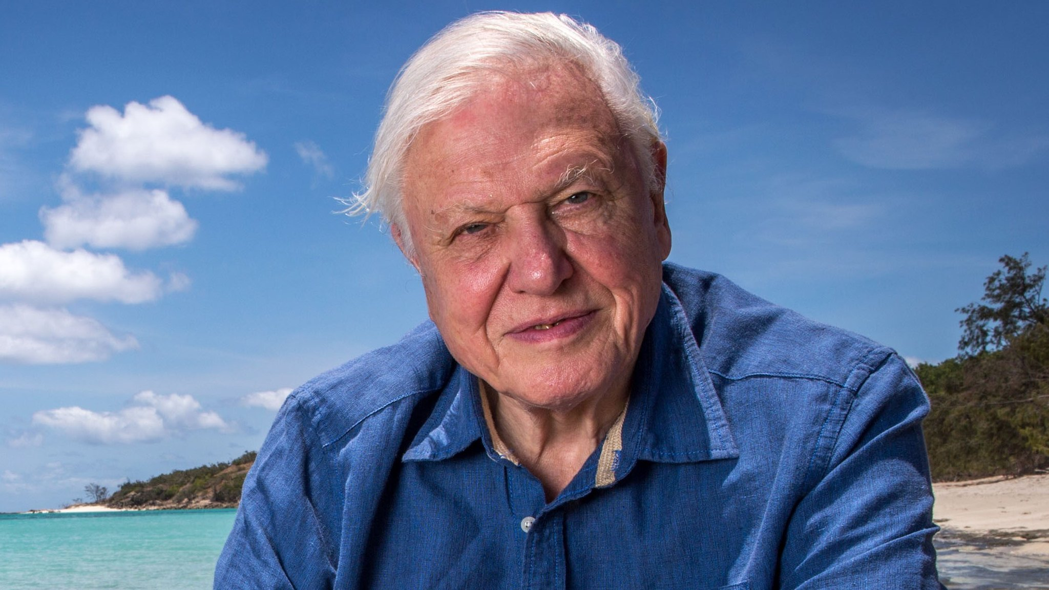 David Attenborough says BBC should prioritise arts