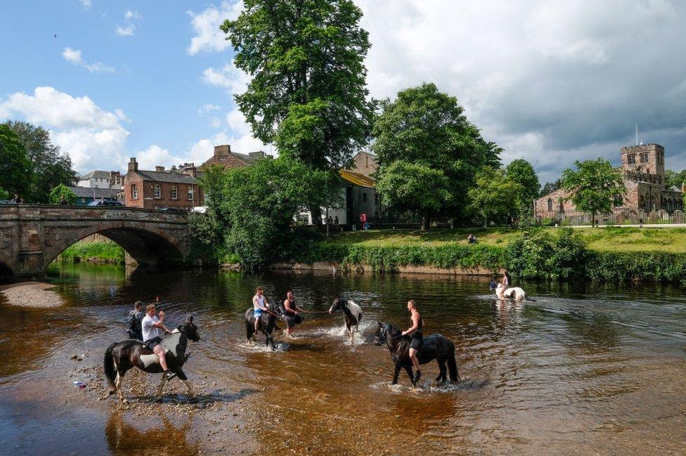 مهرجان أبلبي للخيول