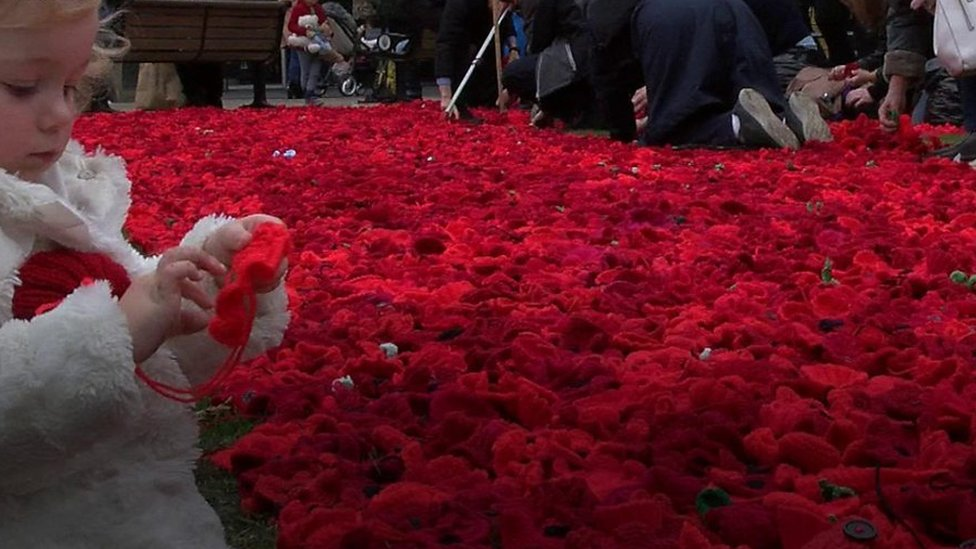 Volunteers create carpet of poppies in Newcastle