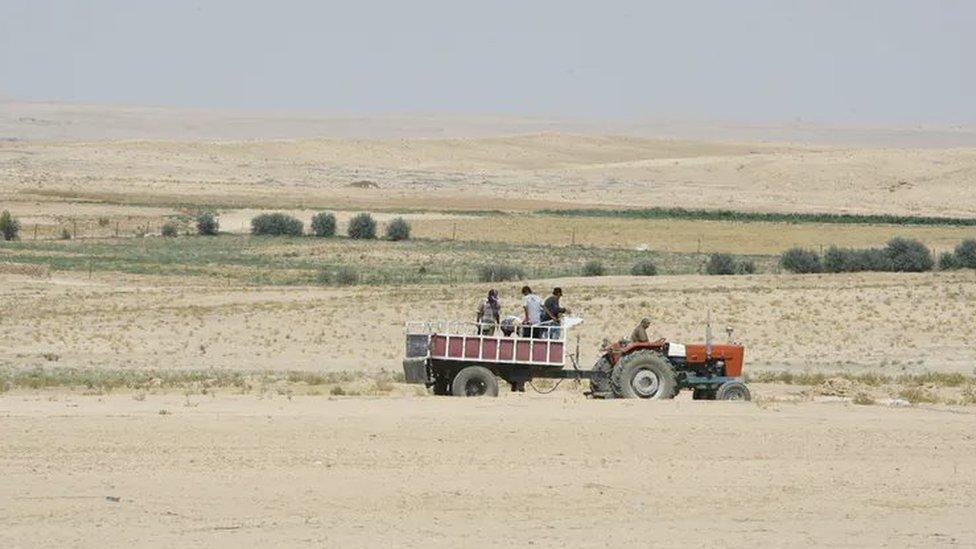 Agricultores viajando en un tractor en la región de Hasaka, Siria, afectada por la sequía, en 2010.
