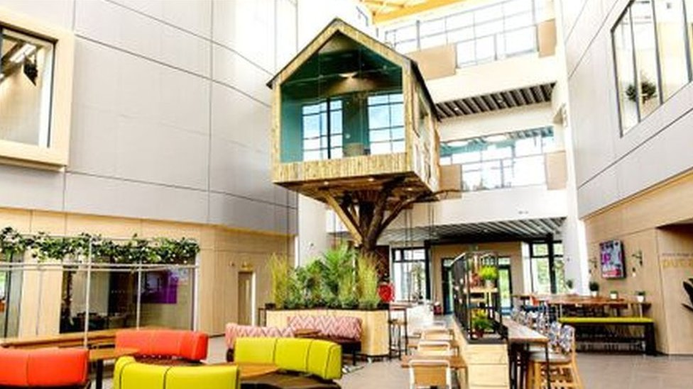 Treehouse at Moneypenny office