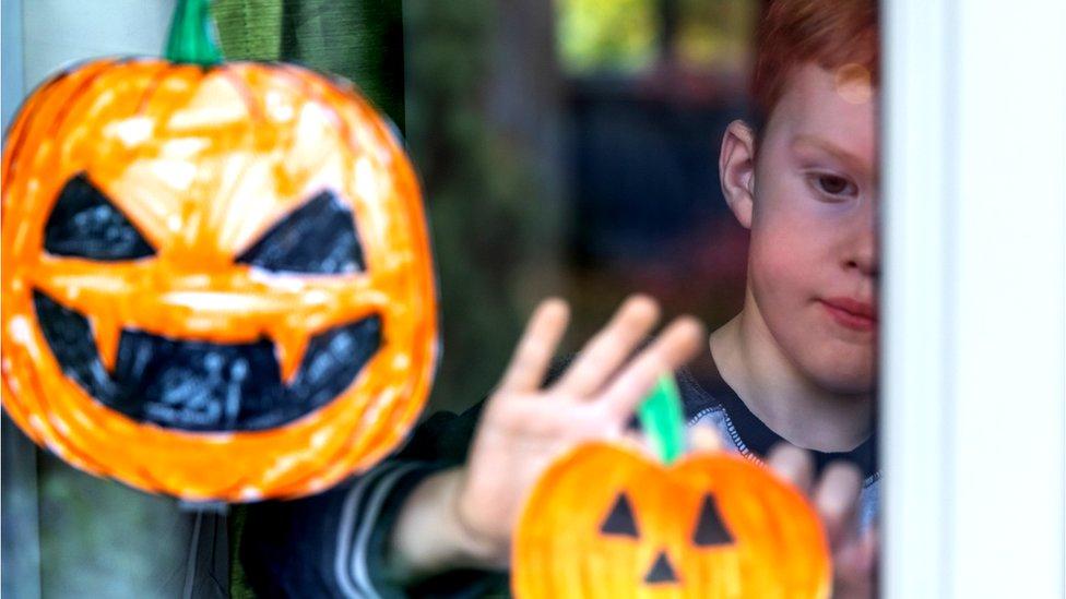 pumpkin in window