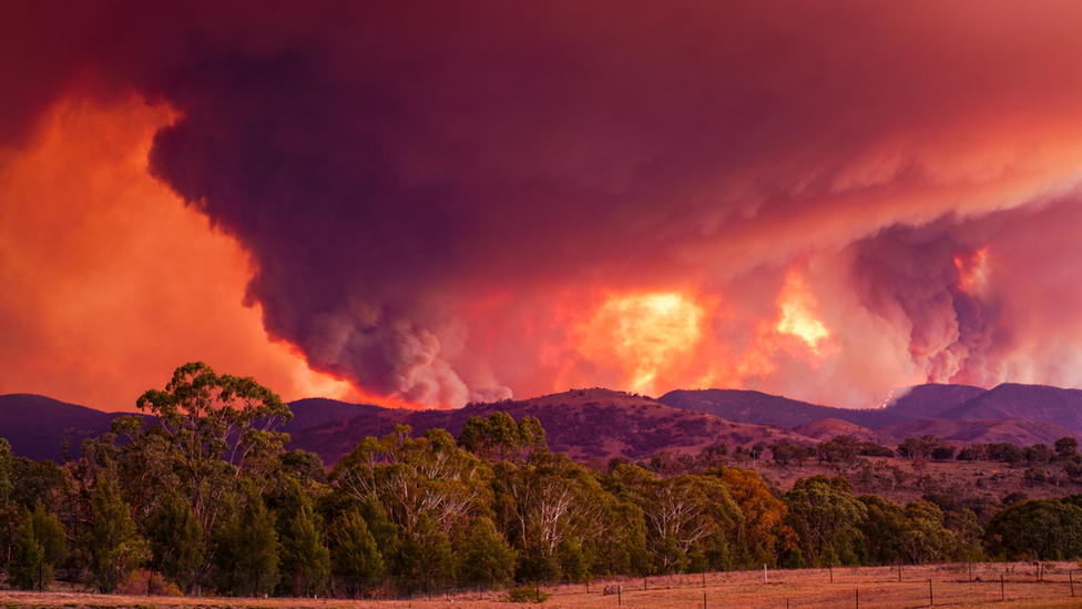 Massive smoke clouds turn the sky red above above a blaze south of Canberra in January 2020