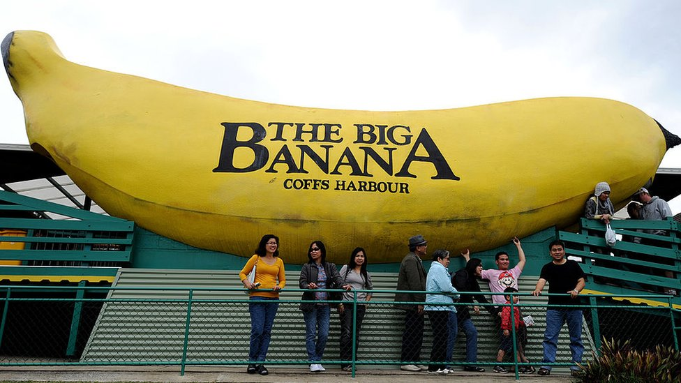 Tourist stand beneath The Big Banana in Coffs Harbour, New South Wales
