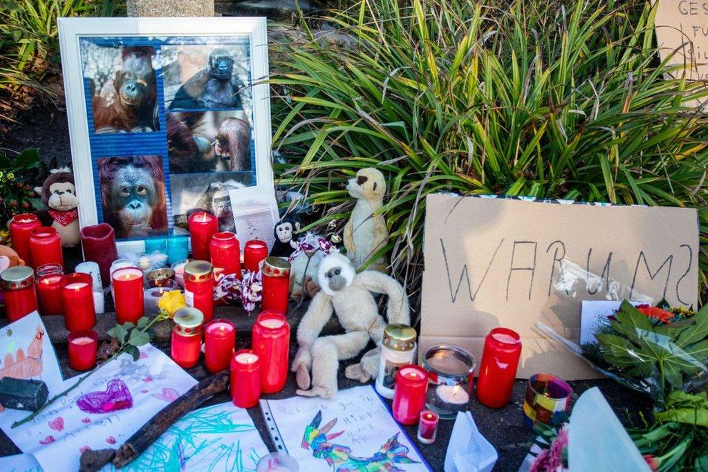 Memorial a los monos que murieron