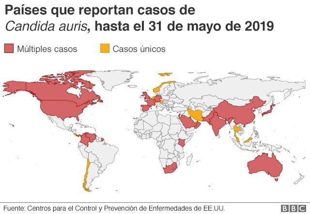 Mapa de casos de Candida auris
