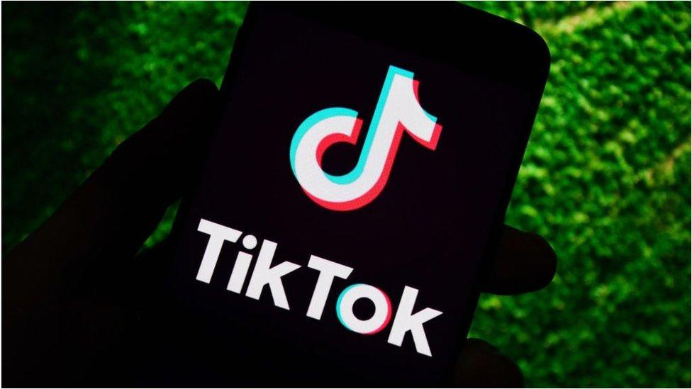 Chinese-owned TikTok video app has around one billion users worldwide