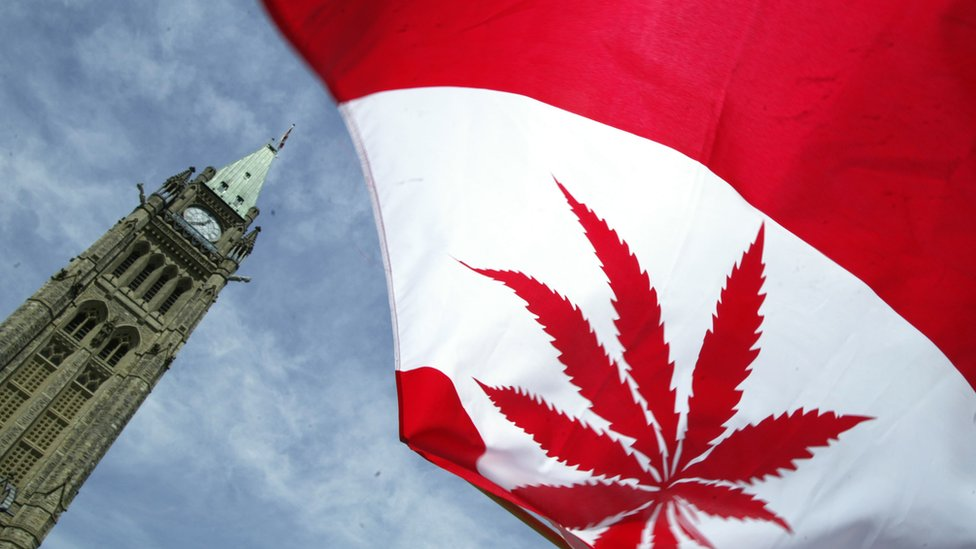 Cannabis in Canada: Who wins and who loses under new law