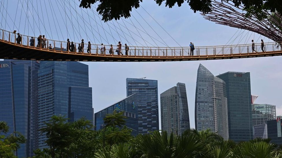 Visitors take in the view from the aerial walkway of the Garden by the Bay's Supertree Grove in Singapore, 2017