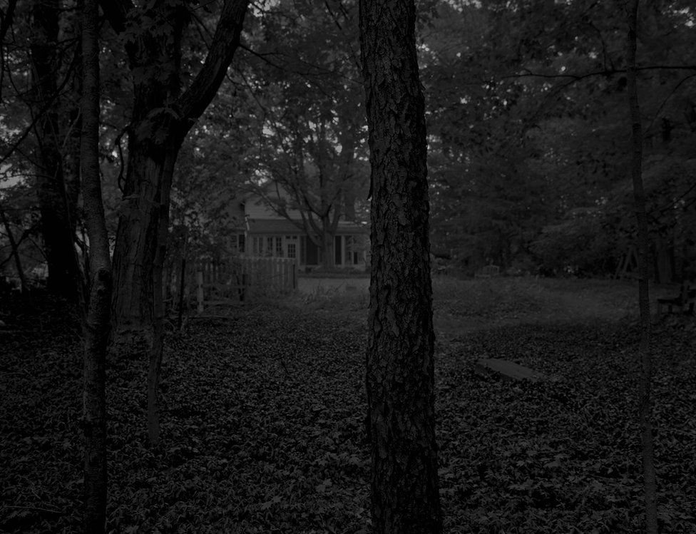 Untitled #2 (Trees and Farmhouse) by Dawoud Bey