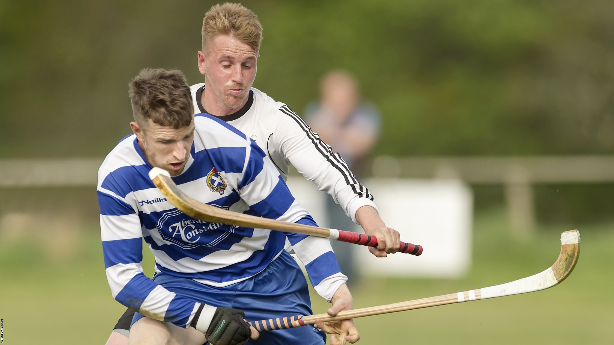 Shinty: Newtonmore to face Kinlochshiel in MacTavish Cup final