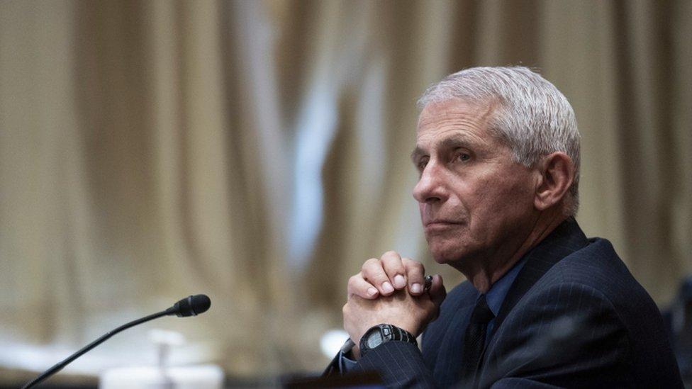 美國新冠疫情總顧問安東尼·福奇