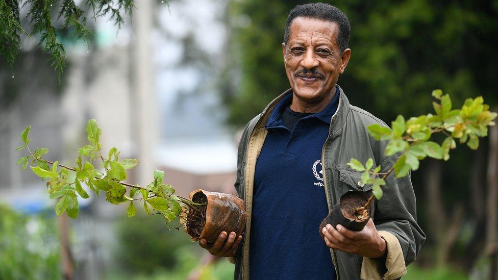 رجل إثيوبي يقف لالتقاط صورة وبيده شتلات الأشجار خلال حملة وطنية لزرع الأشجار في العاصمة أديس أبابا