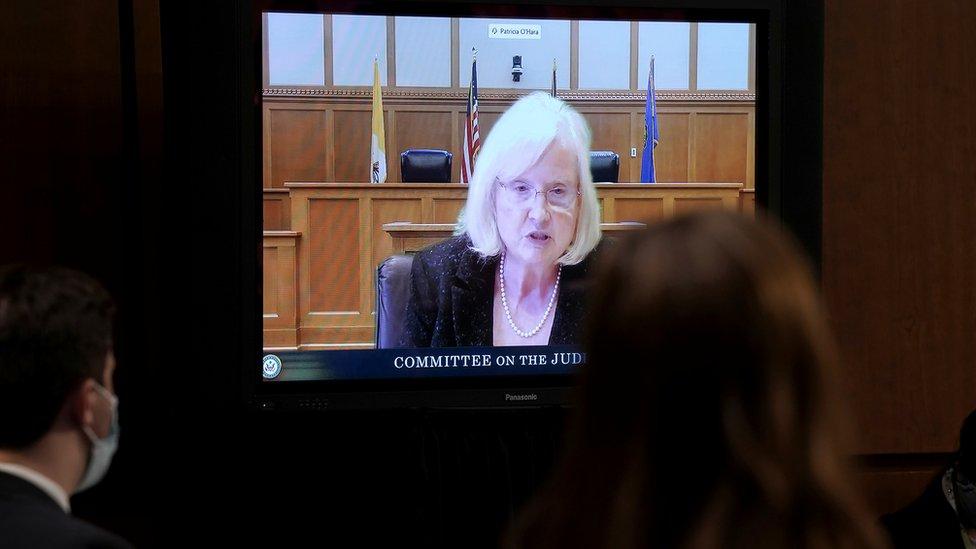 部份議員選擇使用視像會議形式出席聽證會。